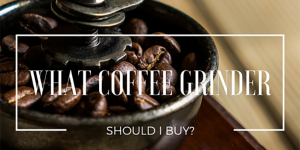 What Coffee Grinder Should I Buy?